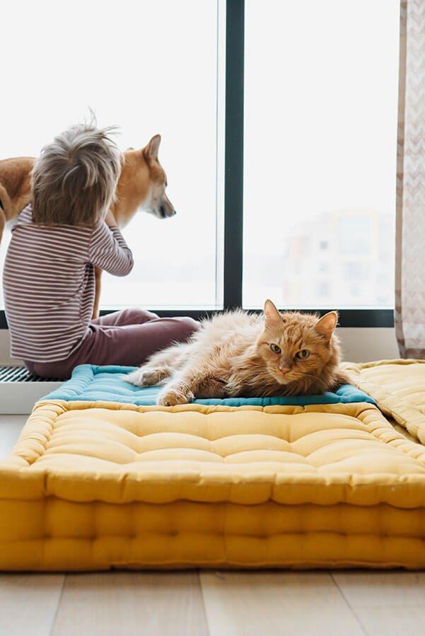 Beneficios que aportan las mascotas a los niños y cómo cuidar de la limpieza de casa en esa situación